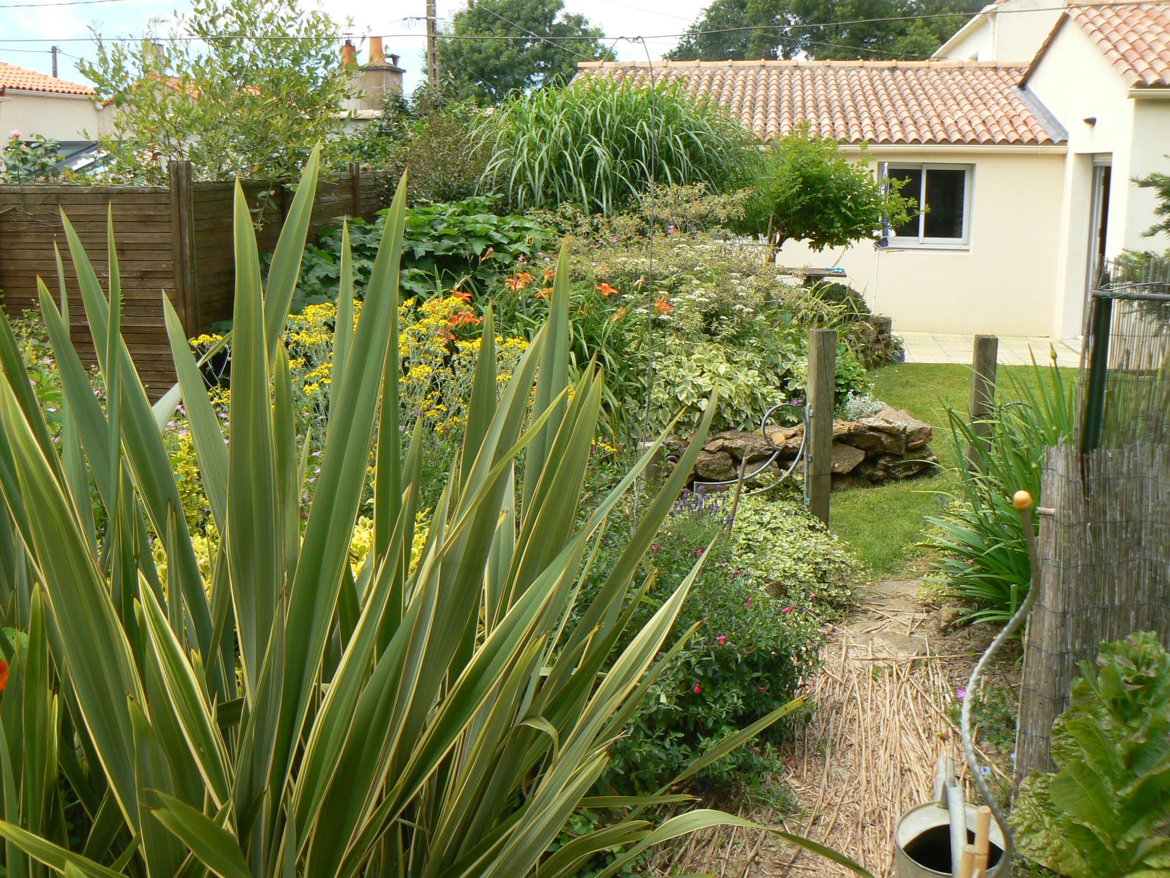 Phormium plans conceptions jardin poteau plan jardin 3d for Jardin 3d