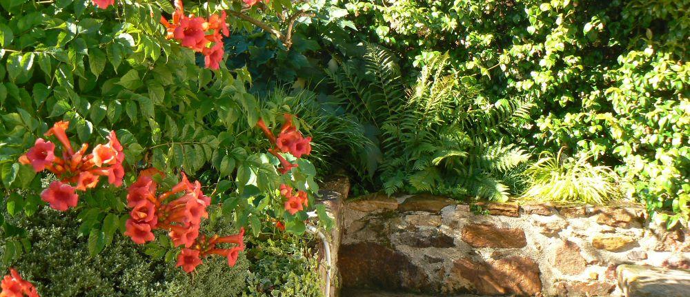 Bignone plan jardin 3d for Jardin 3d en ligne